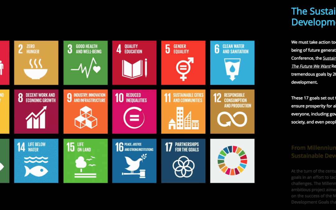The best resolution to 2019: to get the Sustainable Development Goals :)