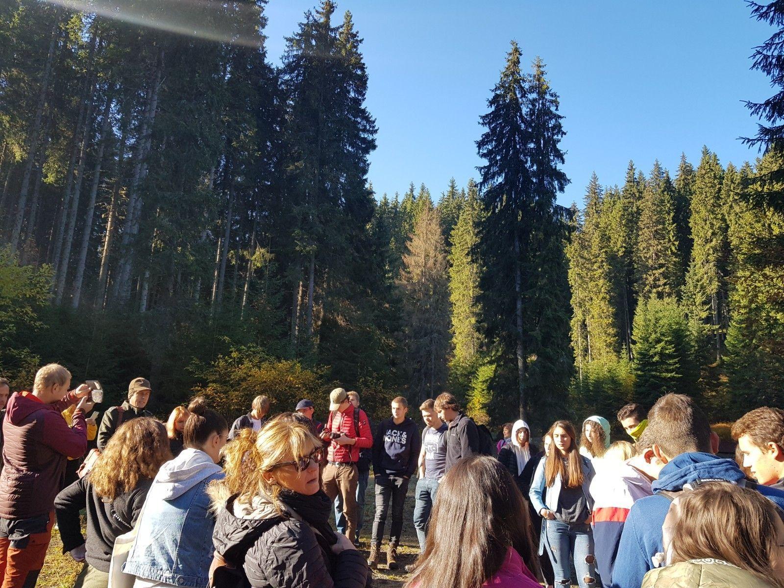 """""""Agir pour la forêt"""" – projet de terrain dans la réservation naturelle de la Vallée du Lotru"""